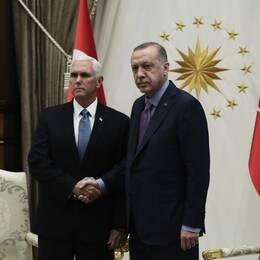 Kurdiska styrkorna säger ja till eldupphör