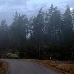 Grå krispig morgon med en nästan full måne uppe fortfarande. Kl 07.50 torsdag 14 nov i närheten av Munkeda