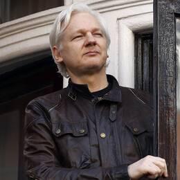 Åklagare har beslutat att lägga ner förundersökningen mot Julian Assange