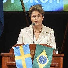 Brasiliens president Dilma Rousseff, Gripen-plan