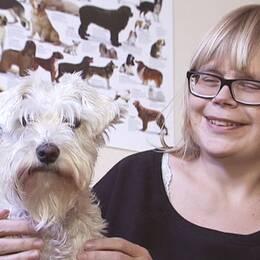 Person tillsammans med hund