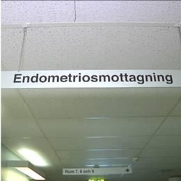 Kvinnor med endometrios löper en större risk att drabbas av olika typer av hjärtsjukdomar. Speciellt utsatta är yngre kvinnor, visar en ny studie som sätter ytterligare ljus på den smärtsamma sjukdomen.