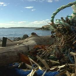 Stora mängder plast färdas med strömmarna och fastnar på Bohusläns klippiga stränder.