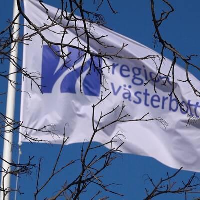 Region Västerbottens flagga fladdrar i vinden med klarblå himmel och solsken, grenar och kvistar i fokus framför en något suddig flagga