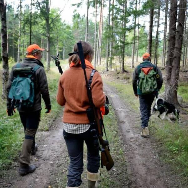 börje öhman jägare jägarkontroll älgjägare