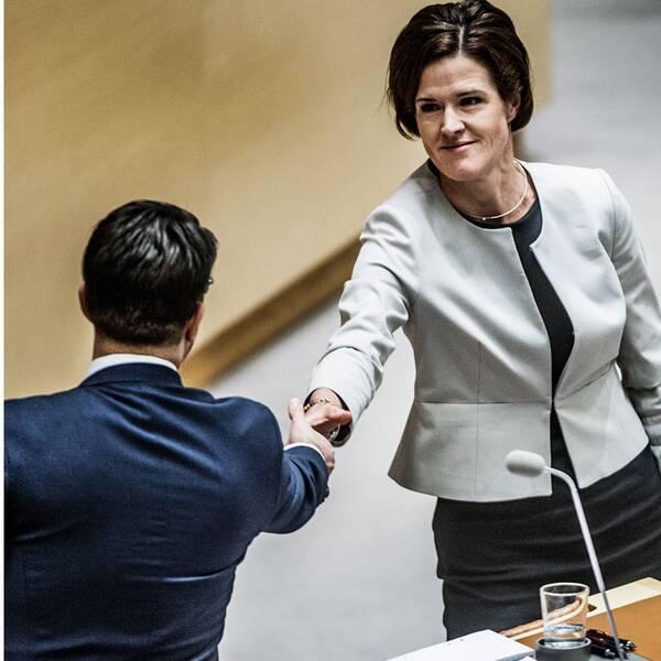 Tomas Eneroth gruppledare för S i riksdagen, och Anna Kinberg Batra skakar hand med Jimmy Åkesson.