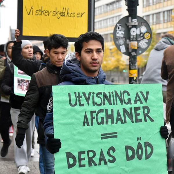 Vänster: Afghanska asylsökande demonstrerar mot Migrationsverkets skärpta praxis i Stockholm. Höger: Afghanistanexperten Anders Fänge