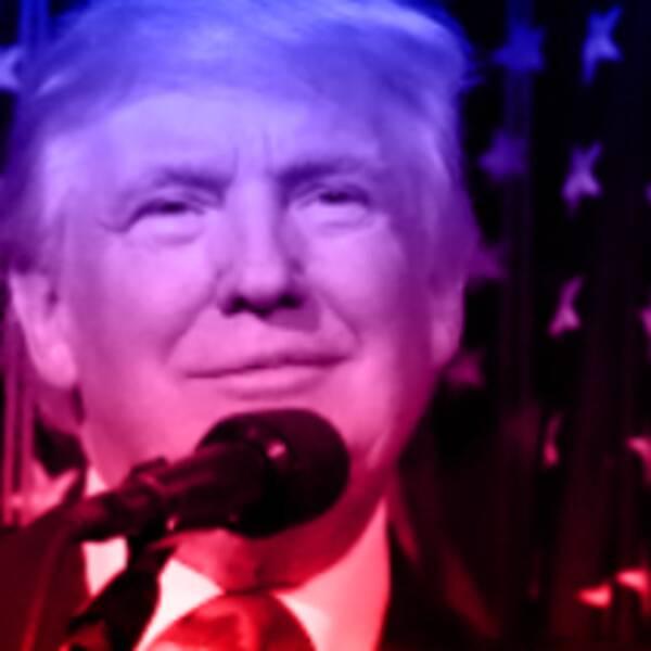 Här är några saker som Donald Trump sagt att han vill göra som president.