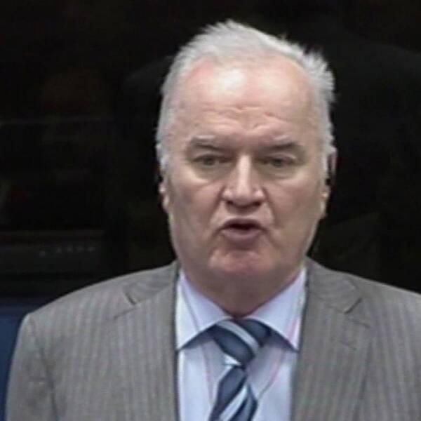 Ratko Mladic i FN-domstolen 2014.