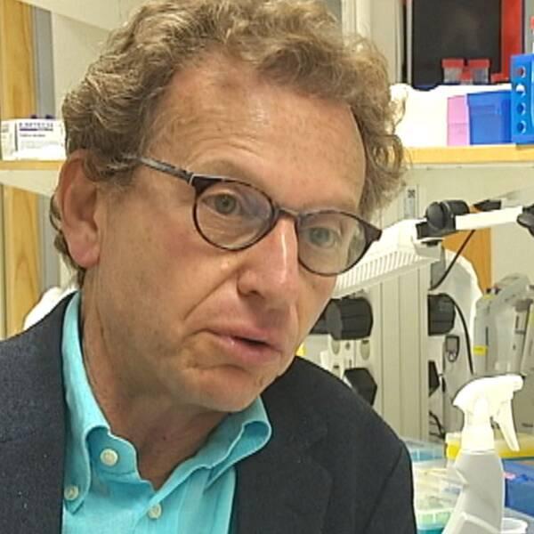 Aleksander Giwercman professor Reproduktionsmedicin Malmö.