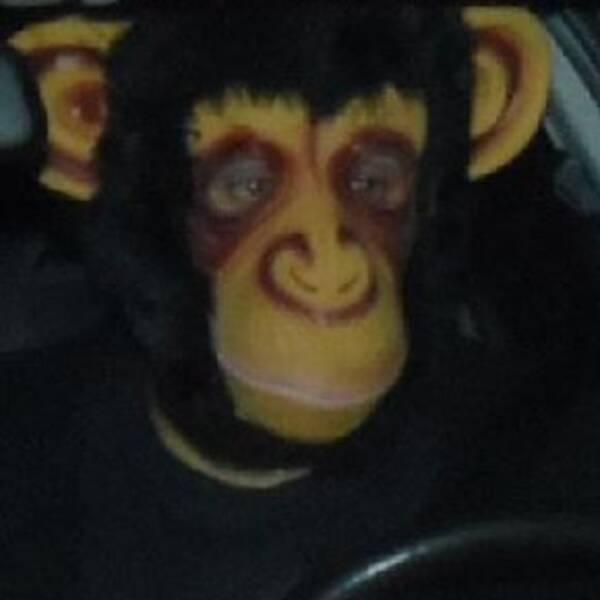 En man iklädd schimpansmask har gäckat polisen i Dalarna.
