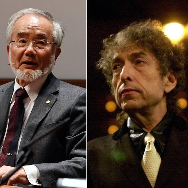 Yoshinori Oshumi, Bob Dylan och Bengt Holmström är tre av årets Nobelpristagare.
