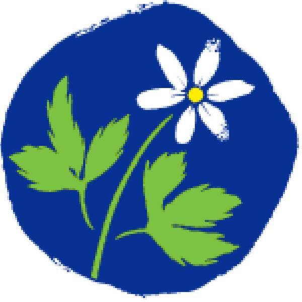 KD:s logotype