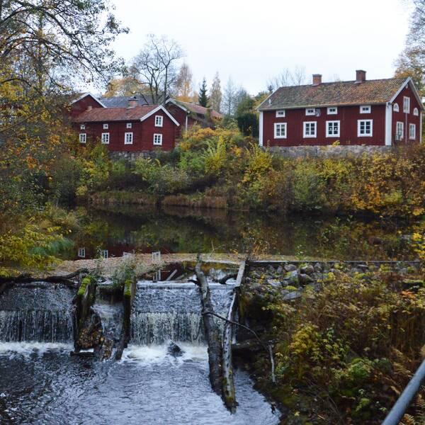 Järledamm och Solveig Oscarsson (S)