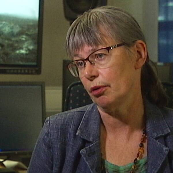 Stina Bergström (MP), värmländsk riksdagsledamot