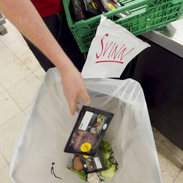 Bild på matvaror som slängs och bild på Fridolin.