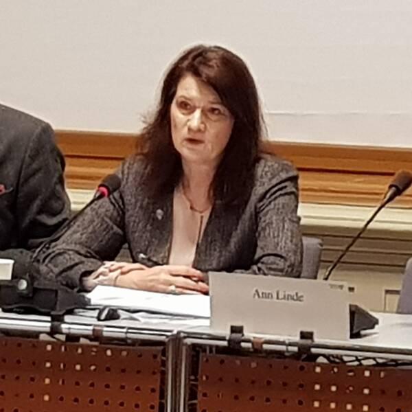 Ann Linde (S) frågas ut av Konstitutionsutskottet, KU, gällande turerna kring Transportstyrelsen.