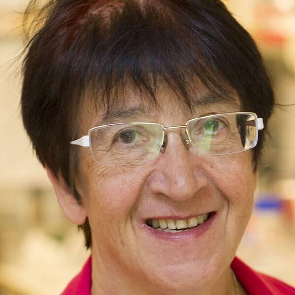Outi Hovatta, professor i obstetrik och gynekologi. Laboratoriet på Fertilitetskliniken vid Gärdet där äggfrysning genomförs