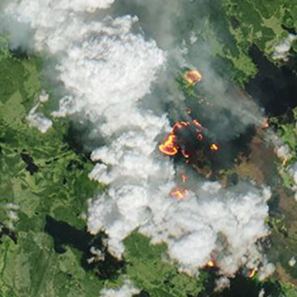 En skarp inzoomning på en av de störra bränderna.