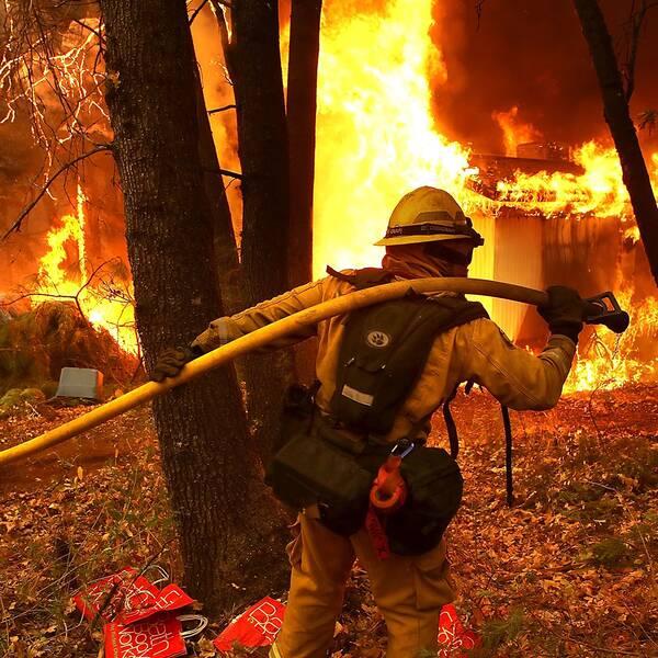 157000 människor har tvingats fly branden.