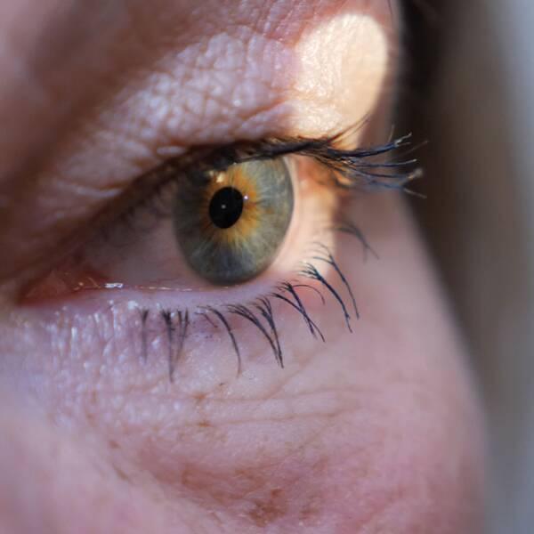 Ett öga i närbild