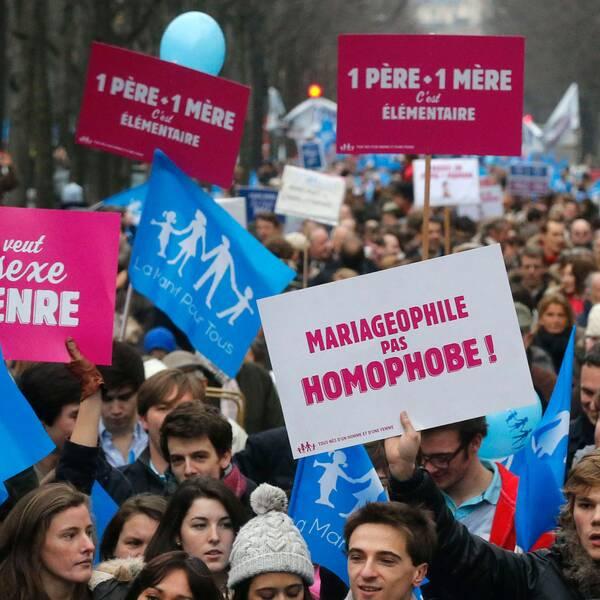 Gula västar i Paris och demonstranter i Manif pour tous 2013