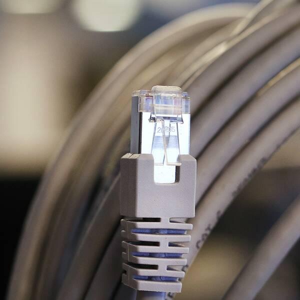 Nätverkskabel