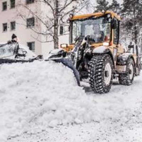 Genrebild. Traktor som skyfflar bort snö bredvid en bil. Kvinnan i bilen öppnar dörren och ser ut att bli inplogad av en vall.
