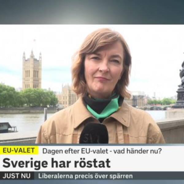 Bild från sändningen dagen efter EU-valet.