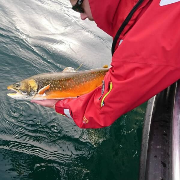 Hör Anton Halldén berätta om läget för den kanske viktigaste fisken i Vättern – rödingen!