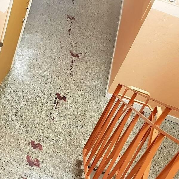 Blod i trappuppgång