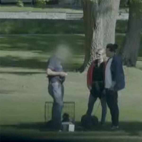 Veterinären, med blurrat ansikte, två reportrar och två valpar som leker.