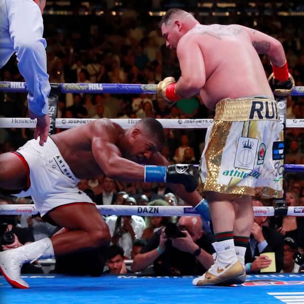 """""""AJ"""" deppar efter den sensationella förlusten mot Ruiz Jr i juni."""