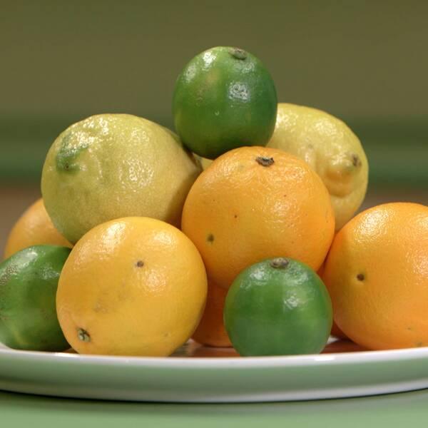 Bild på fat med citrusfrukterna lime, apelsin och citron.