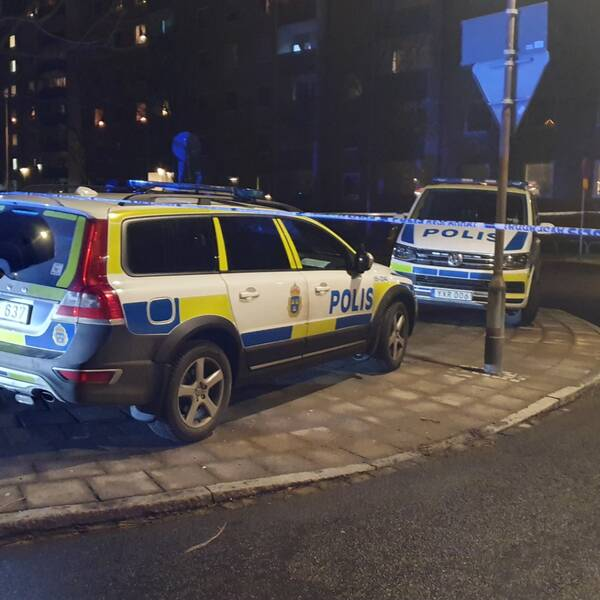 Polisbilar och avspärrningstejp vid mordplatsen på Professorsgatan i Hermodsdal i Malmö.