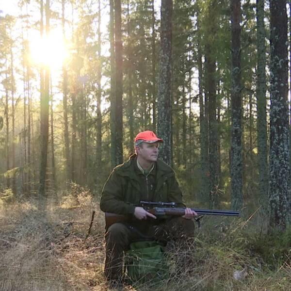 Jägareförbundets ordförande i Värmland Anders Olsson är besviken på att Norge stoppade den planerade jakten på varg i ett gränsrevir.