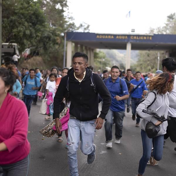 Omkring 3000 migranter har den senaste veckan gått från Honduras till gränsen mot Mexiko.