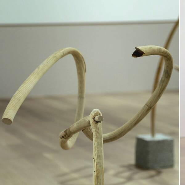 KOnstnären Johanna Gustafsson Fürst böjer och ympar trä för att gestalta hur språk och kultur disciplinerats.