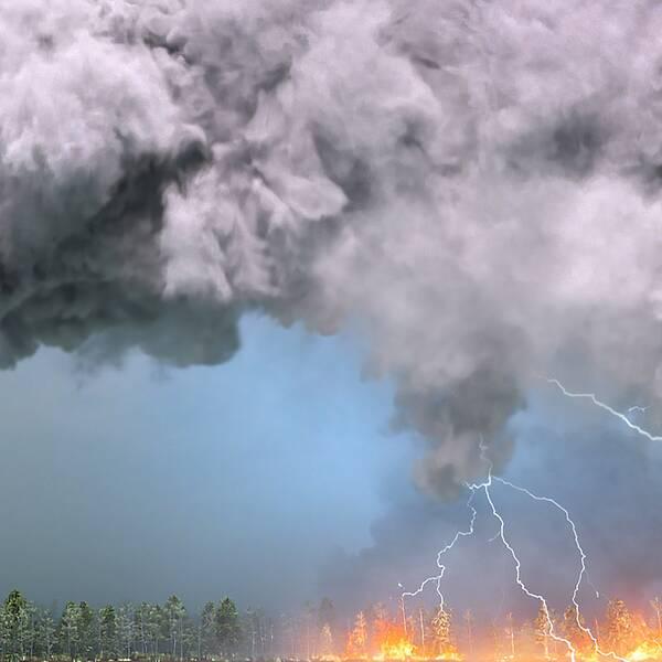En grafisk bild som visar hur en megabrand skapar ett stort moln som det blixtar från så att elden sprider sig till nya områden längre bort.