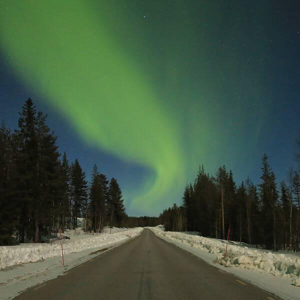 Trevlig lördag!I går blev det ännu en roadtrip för att jaga norrsken inte minst för att den säsongen snart är över med allt ljusare nätter. Bilden är tagen nära Murjek, Jommkokks kommun, Lappland.