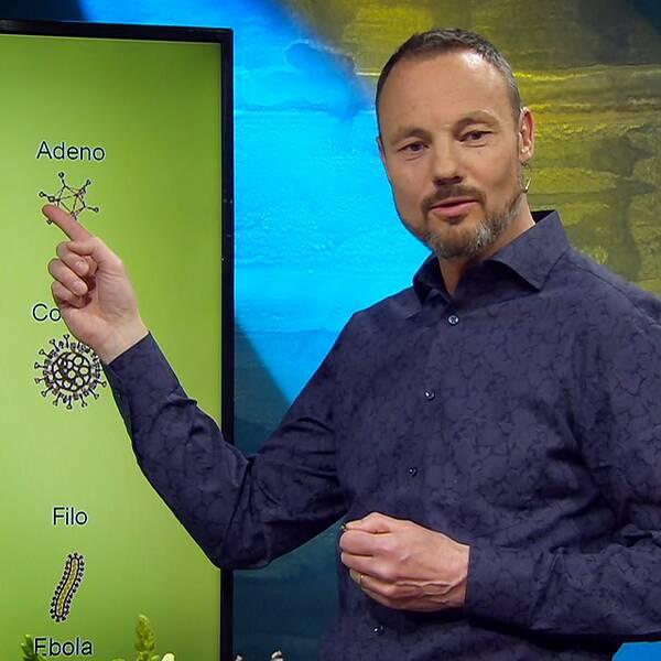 Virologen Niklas Arnberg förklarar hur olika coronavaccin forskas fram.