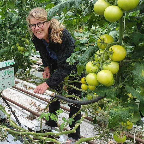 Tomatodlare Louise Vrethem och hummelodlare Elisabeth Weidel