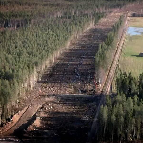 Flygbild över ett skogsområde där en bred väg röjts upp.