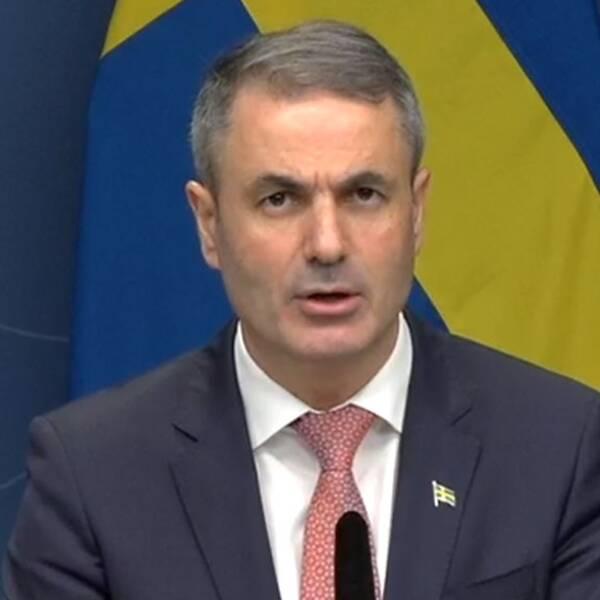 Näringsminister Ibrahim Baylan