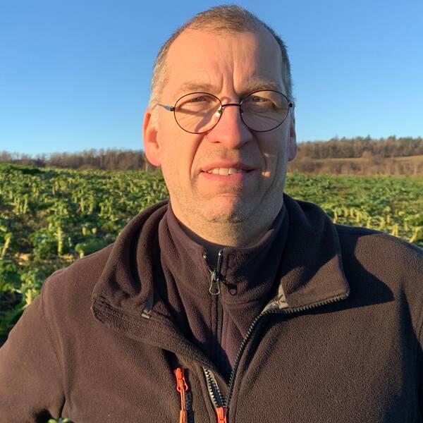 Mikael Jidenholm, lantbrukare, på åker med skördad grönkål.