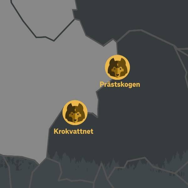 Karta över Härjedalen och Gävleborg. Rubrik: Kända vargrevir. Två gula cirklar markerar Prästskogen och Krokvattnet på gränsen mellan Gävleborg och Härjedalen.