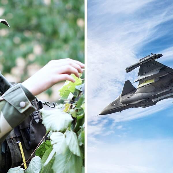 mönstring, militär, flygvapen