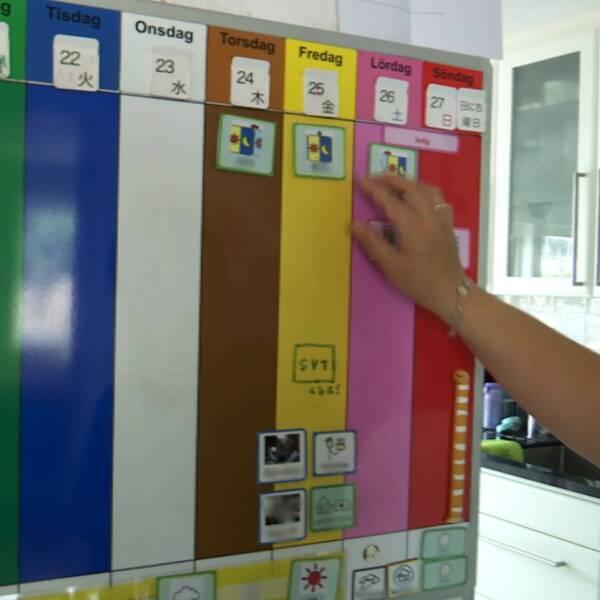 Ett schema över veckan till vänster, för att underlätta för barn att förstå sin vecka. Till höger en bild på utredaren Maria Gustavson.