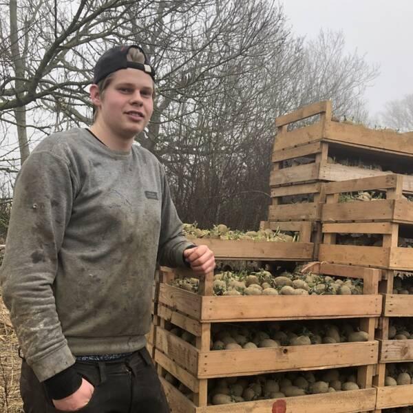 Jesper Ebbesson potatisoldaren från Mäsinge på Bjärehalvön.