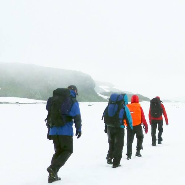 STF människor på vandring fjällen fjäll och vinter vandring på vintern